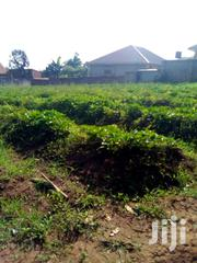 Land In Mukono Kyetume Estates For Sale | Land & Plots For Sale for sale in Central Region, Mukono