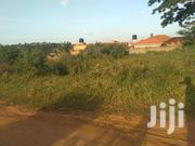 50x100ft Plot on Quick Sale in Gayaza Nakwero at 25M | Land & Plots For Sale for sale in Central Region, Kampala