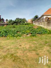 Land In Kira Nsasa For Sale | Land & Plots For Sale for sale in Central Region, Mukono