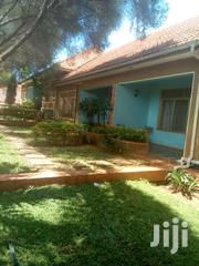 Homely Nice Two Bedroom Fully Furnished Ntinda | Houses & Apartments For Rent for sale in Central Region, Kampala