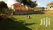 Land In Kiwatule Najjera For Sale | Land & Plots For Sale for sale in Central Region, Kampala