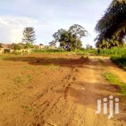 Tittled Plots for Sale in Namugongo Sonde 50*D | Land & Plots For Sale for sale in Central Region, Kampala