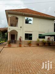Kansanga Hill 4bedrmed Stand Alone House for Rent at 1.8m | Houses & Apartments For Rent for sale in Central Region, Kampala
