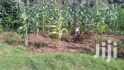 Muwulize Reliable | Land & Plots for Rent for sale in Central Region, Mukono