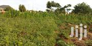 Copyright Plot for Sale in Sonde on a Hill Only 60*100fts | Land & Plots For Sale for sale in Central Region, Wakiso