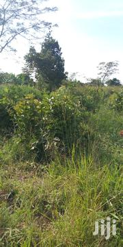Farm Land for Sale in Nakasajja Kiwumu 35acres | Land & Plots For Sale for sale in Central Region, Mukono