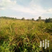100 Acres of FERTILE FARMLAND at 3M Each | Land & Plots For Sale for sale in Central Region, Kampala