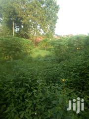 Cheap Plot for Sale Bukerere | Land & Plots For Sale for sale in Central Region, Kampala