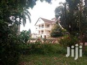 Stand Alone House for Rent in Mutungo-Hill:7bedrooms,7bathrooms at 11m | Houses & Apartments For Rent for sale in Central Region, Kampala