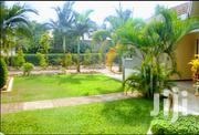 Imported Natural Grass | Garden for sale in Central Region, Kampala