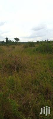 Land in Acres for Sale | Land & Plots For Sale for sale in Central Region, Luweero