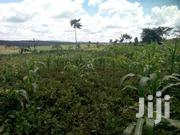 3squaremialos of Land for Sale | Land & Plots For Sale for sale in Western Region, Hoima