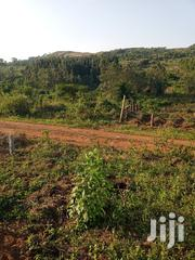 Plot Of Land At Entebbe Road For Sale | Land & Plots For Sale for sale in Central Region, Wakiso