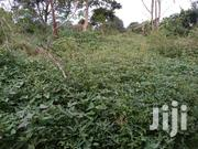 Plot Of Land 50x100 On Sale | Land & Plots For Sale for sale in Central Region, Kampala