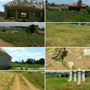 Goma-commercial Plots Neighbouring Namugongo | Land & Plots For Sale for sale in Central Region, Wakiso