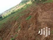 Kira 50x100. Plot Kira Nsasa For Sale | Land & Plots For Sale for sale in Central Region, Kampala