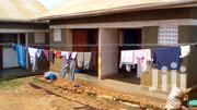 Single Room for Rent in Gayaza Town | Houses & Apartments For Rent for sale in Central Region, Kampala