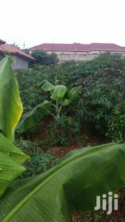 Land For Sale In Katale - Jomayi | Land & Plots For Sale for sale in Central Region, Kampala