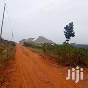 Land 3 Acres For Sale At 150m Per Acre. | Land & Plots For Sale for sale in Central Region, Kampala