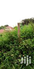 Very Beautiful Half an Acre on Forcedsale Namulanda Ntebe Rd Lake View | Land & Plots For Sale for sale in Kampala, Central Region, Uganda