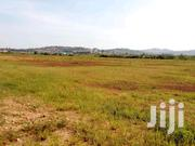 Namanve Jinja Raed Land for Sale 20 Acres | Land & Plots For Sale for sale in Central Region, Kampala