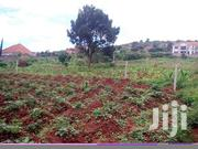 Bwebajja Plots for Sale | Land & Plots For Sale for sale in Central Region, Kampala