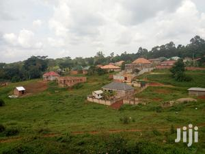 50x100 Plot With Title in Buloba