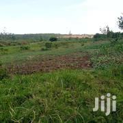 Land 4.5 Acre In Kira-kitukutwe | Land & Plots For Sale for sale in Central Region, Kampala