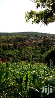 Land For Sale | Land & Plots For Sale for sale in Central Region, Sembabule