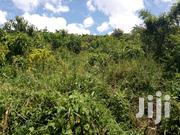 Mile Land for Sale in Mukono Kasaawo | Land & Plots For Sale for sale in Central Region, Kampala