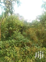 Nakifuma 1acre Title Ready | Land & Plots For Sale for sale in Central Region, Mukono