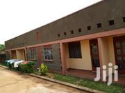 Dabble Room House for Rent in Kyanja Ringroad | Houses & Apartments For Rent for sale in Central Region, Kampala