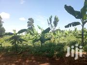Plot Of Land From Masaka Kyotera For Rent | Land & Plots for Rent for sale in Central Region, Masaka