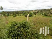 Land for Sale in Nsasa and 60/100ft | Land & Plots For Sale for sale in Central Region, Kampala