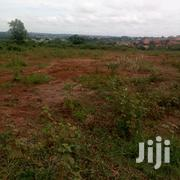 Kira Kitikifumba 50x100ft Plot of Land for Sale at 40m | Land & Plots For Sale for sale in Central Region, Kampala