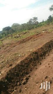 Land In Kasayi Bukerere For Sale | Land & Plots For Sale for sale in Central Region, Kampala