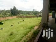 Land Farming in Mazzi-Luweero,50 Acres,Price 2.5m Per | Land & Plots For Sale for sale in Central Region, Kampala