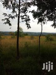 1 Acre of Land Plot With Title | Land & Plots For Sale for sale in Central Region, Mubende
