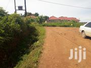Land for Sale in Najjera - Kira 50/💯 Ft | Land & Plots For Sale for sale in Central Region, Kampala