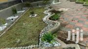 Professional Compound Designing Services   Landscaping & Gardening Services for sale in Central Region, Kampala