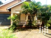 Standalone House for Rent in Ntinda   Houses & Apartments For Rent for sale in Central Region, Kampala