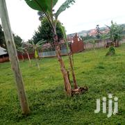 7plots for Sale Located in Seeta Town Private With Good Neighbourhood   Land & Plots For Sale for sale in Central Region, Mukono