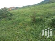 Gayaza Nakwero Plot on Forced Sale With Ready Land Title 50by100 | Land & Plots For Sale for sale in Central Region, Kampala