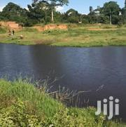 Land In Mukono Katosi For Sale | Land & Plots For Sale for sale in Central Region, Mukono