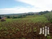 19 Decimals Plot of Land for Sale in Bulindo | Land & Plots For Sale for sale in Central Region, Kampala