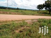 Good Plots for Sale in Mayumba Town Council, Wakiso District | Land & Plots For Sale for sale in Central Region, Wakiso