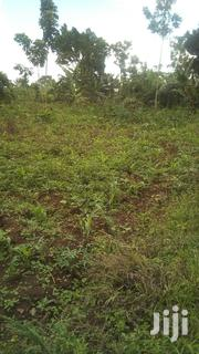 Cheap Land for Farming | Land & Plots For Sale for sale in Central Region, Luweero