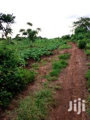 Quick Sale 3m Kawoomya Main | Land & Plots For Sale for sale in Central Region, Mukono