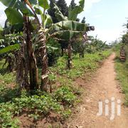 3 Acres in Gayaza Zirobwe Town Center After Busiika | Land & Plots For Sale for sale in Central Region, Kampala