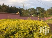 House/An Acre in Kira | Land & Plots For Sale for sale in Central Region, Wakiso
